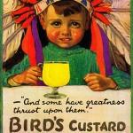 Bird's Custard – die erste Vanillesauce ohne Ei!
