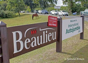 Classic Cars, New Forest und Beaulieu