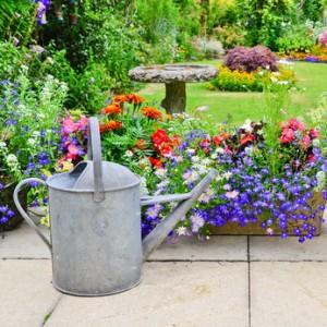 English country garden©-dambuster-Fotolia.com